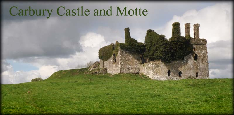 Carbury Castle and Motte