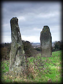 Baltray Stone Pair