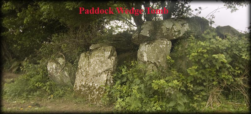 Paddock Wedge Tomb