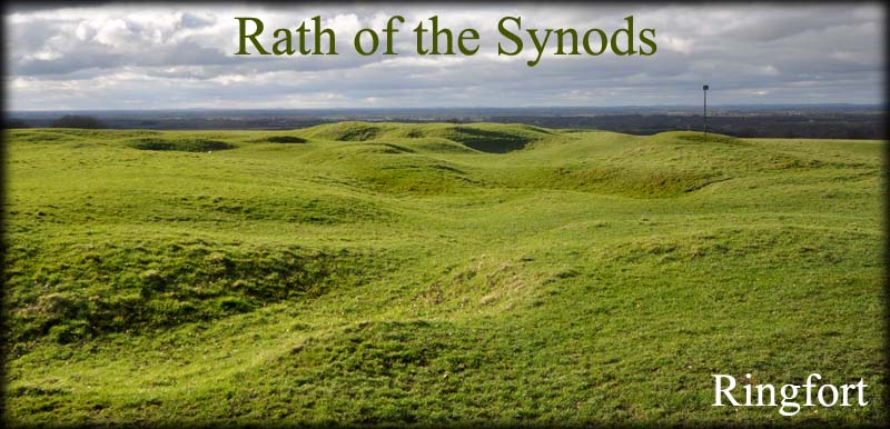 Rath of the Synods