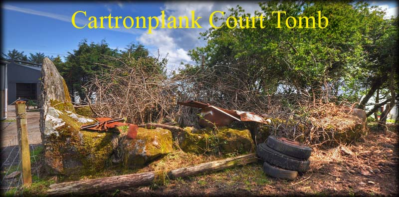 Cartronplank Court Tomb